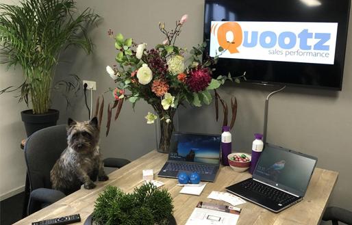Officedog Lizzy verwelkomt 2 nieuwe collega's!